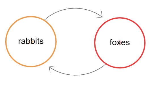 rabbits-foxes